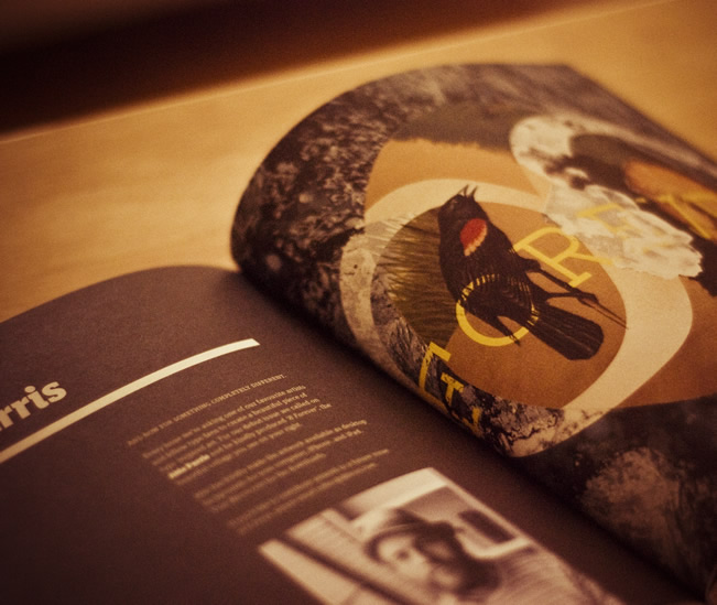 8 Faces Typography Magazine