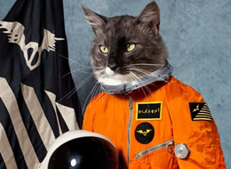 Klaxons: Surfing The Void on The Import